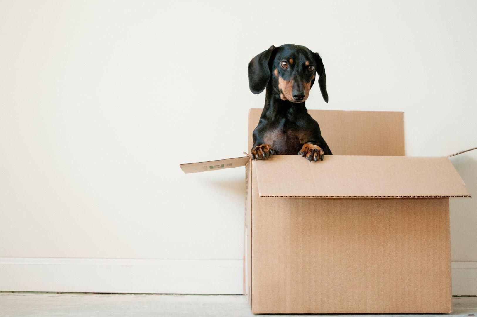 Verhuistips na de verkoop van je woning